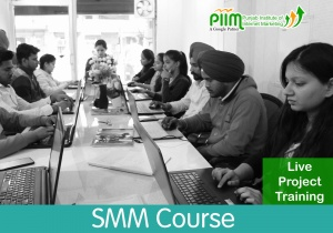 SMM Course in Patiala