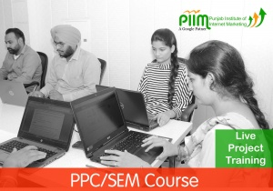 PPC & SMM Course in Patiala