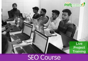 SEO Course in Sanam