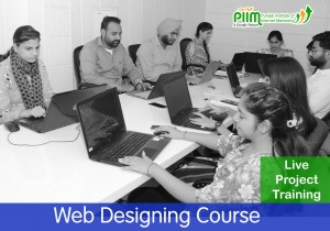 Web Designing Course in Barnala
